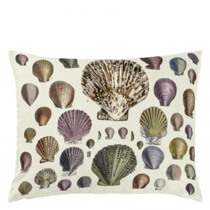 Pude Captain Thomas brown´s shells oyster by John Derian